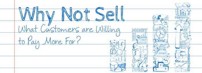 why-not-sell-what-customers-are-willing-to-pay-more-for-1100x400
